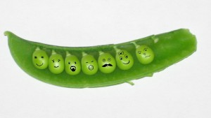 Family: peas in a pod