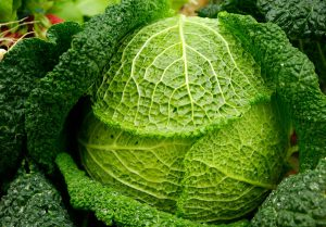 how to beat winter depression (SAD) / cabbage